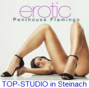 http://contessa.ch/flamingo#models#filter=Anwesend