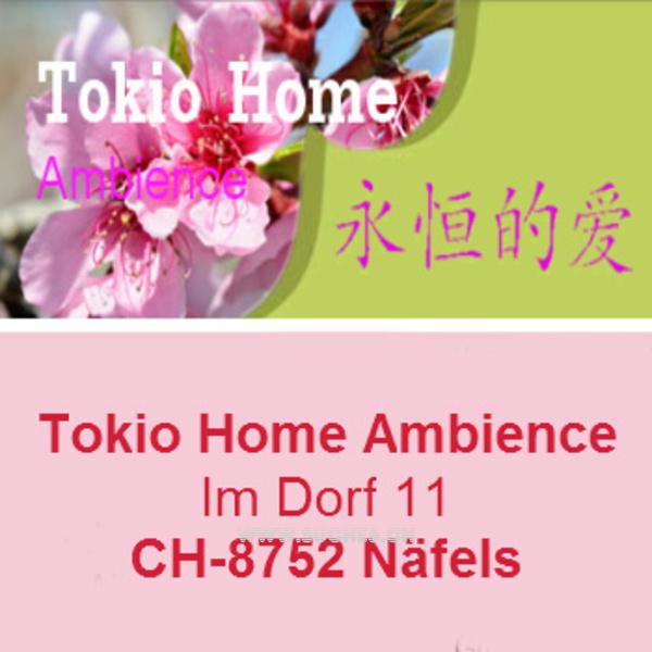 Tokio Home Näfels Im Dorf 11