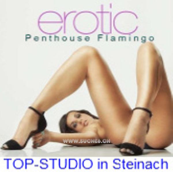 Studio Flamingo Steinach Hauptstrasse 39